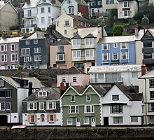 Bayard's Cove, Dartmouth, Devon by Tony Steel