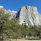 Yosemite - El Capitan by Barrie Woodward