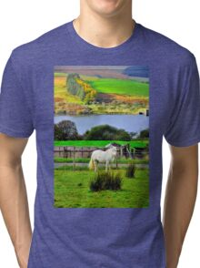 Welsh Pony Tri-blend T-Shirt