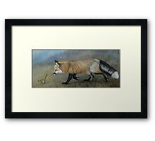 Red Fox Encounter Framed Print