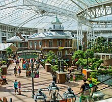 Gaylord Opryland Hotel by Ray Chiarello