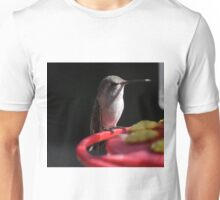 JUVENILE FEMALE ANNA'S RESTING ON THE PERCH Unisex T-Shirt