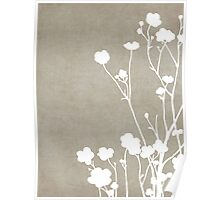 Buttercups in Beige & White Poster