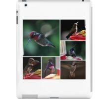 COLLAGE OF  HUMMINGBIRDS NUMBER 2 iPad Case/Skin