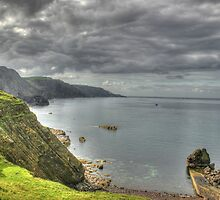 Cliff top by Sam Denning