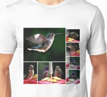COLLAGE OF HUMMINGBIRDS NUMBER 1 Unisex T-Shirt