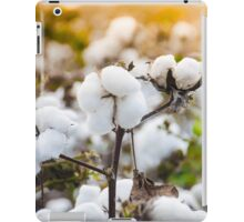 Cotton Field 4 iPad Case/Skin