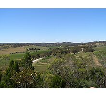 Neagles Rock Vineyard' Clare Valley, South Australia. Photographic Print