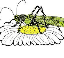 Cricket on daisy Zentangle by siwabudda