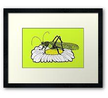 Cricket on daisy Zentangle Framed Print