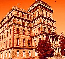 Greystone Psychiatric Hospital 3 by Jamie Babbitt