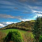 Beecraigs View by Tom Gomez