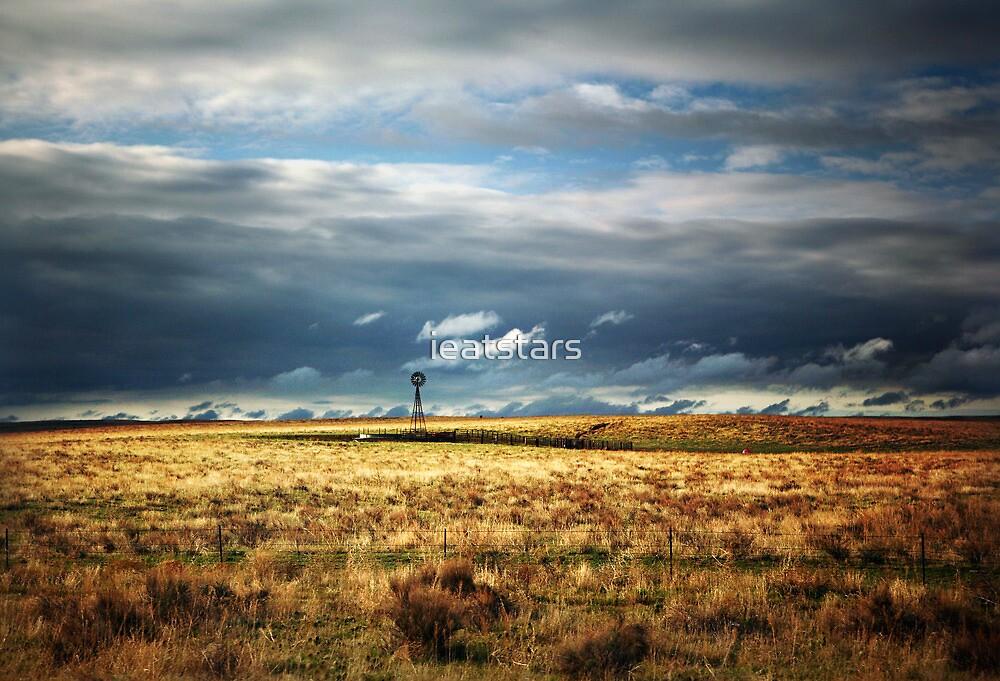 Windmill in the Morning by ieatstars