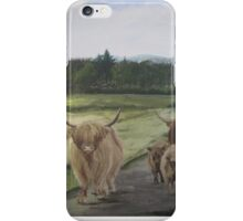 Highland coos at the East Church iPhone Case/Skin