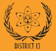 District 13 by Rachael Thomas