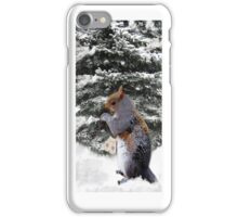 (✿◠‿◠) (◡‿◡✿)  A SQUIRREL AND HIS MITTENS IPHONE CASE(✿◠‿◠) (◡‿◡✿) iPhone Case/Skin