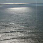 Lake Eyre mauve velvet by Hugh Cross