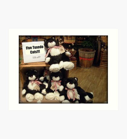 Five Charming Tuxedo Stuffed Cats For Sale! Art Print