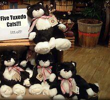Five Charming Tuxedo Stuffed Cats For Sale! by Jane Neill-Hancock