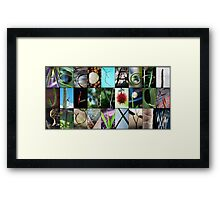 Nature's Alphabet Framed Print