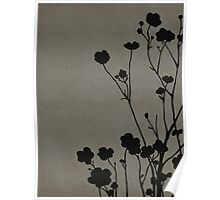 Buttercups in Gray Poster