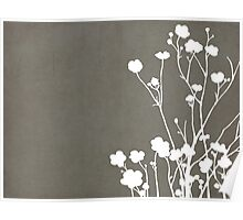 Buttercups in Gray & White Poster