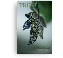 Trust To Trust © Vicki Ferrari Photography Canvas Print