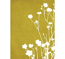 Buttercups in Mustard & White Photographic Print
