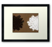 Queen Anne's Lace in Brown & White Framed Print
