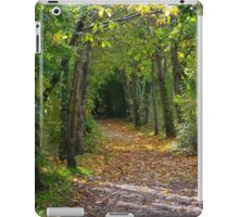 Riverside walk, Totnes iPad Case/Skin