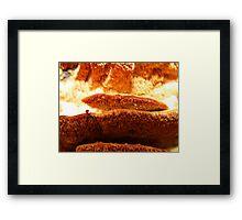 Wild Fungus Framed Print