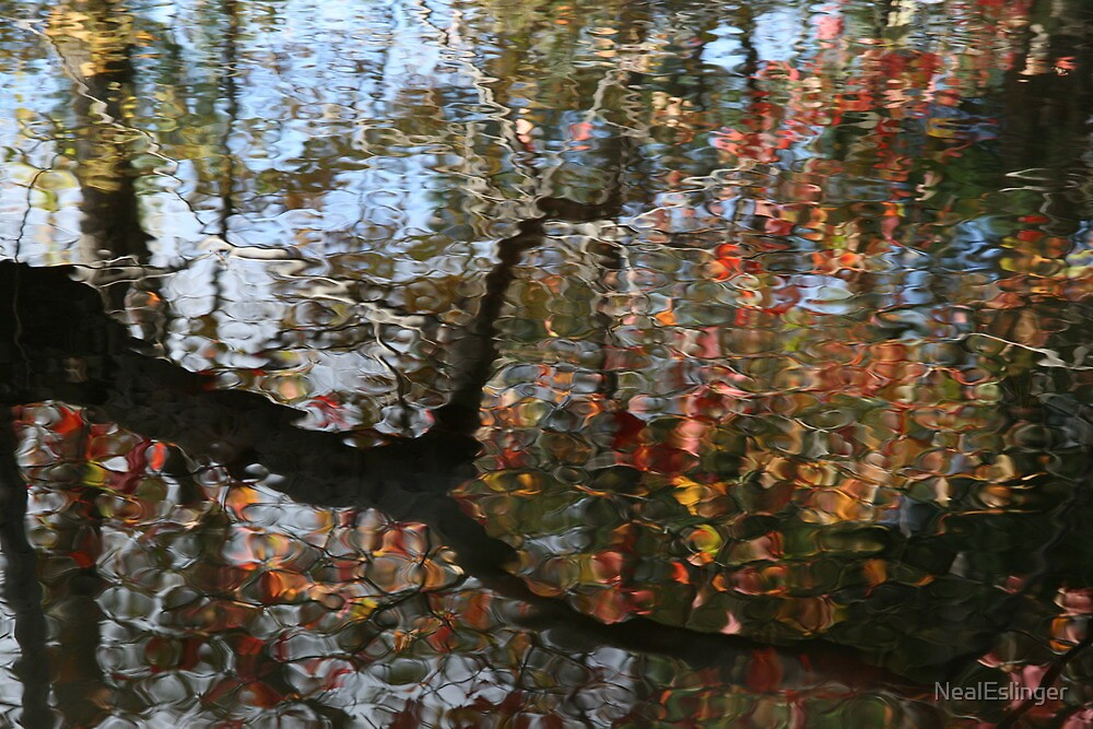Autumn Reflections by NealEslinger