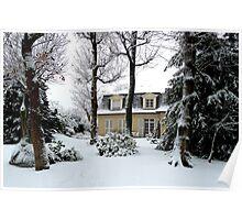 fresh snow in my garden Poster