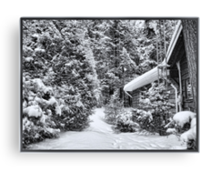A Snowy Path in the Forest - A Secluded Country Cabin in the Woods after a Canadian Blizzard Canvas Print