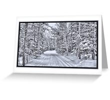 Winter Wonderland ~ A Snow-covered Forest Road in a Wintry Landscape after a Snow Storm Greeting Card