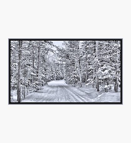 Winter Wonderland ~ A Snow-covered Forest Road in a Wintry Landscape after a Snow Storm Photographic Print