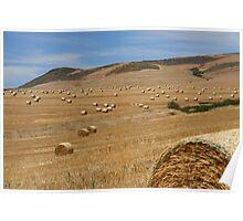 """""""Swiss Roll"""" landscape Poster"""