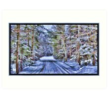 A Fairy Tale Forest with Snowy Evergreen Trees in the Cold Canadian Wilderness Art Print