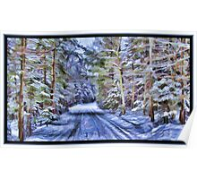 A Fairy Tale Forest with Snowy Evergreen Trees in the Cold Canadian Wilderness Poster