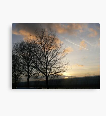 favorite treescape Canvas Print
