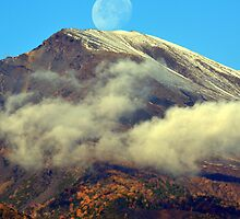 The neck of the moon. by Turi Caggegi