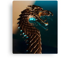 Knight of the dragon Canvas Print