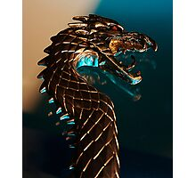 Knight of the dragon Photographic Print