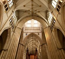 The Minster by Elizabeth Tunstall