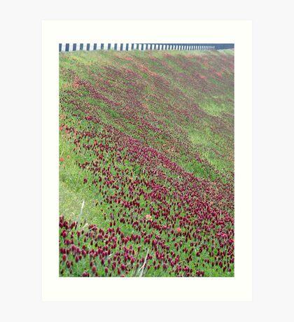 Hillside Floral Art Print