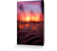 Cove Sunset pt3 Greeting Card