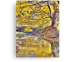 Autumn Tree And Creek Canvas Print