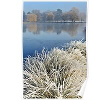 Heron Pond in Winter Poster