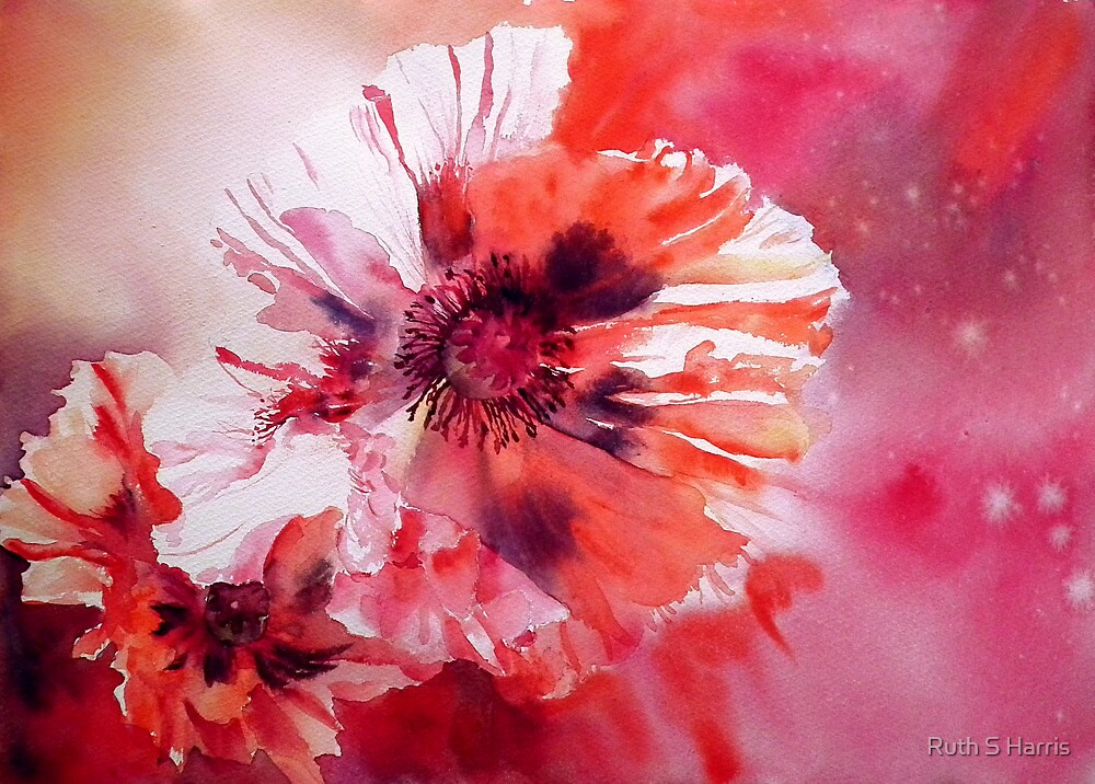 Cosmic Poppies by Ruth S Harris
