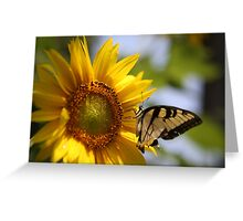 Sunflower with Butterfly Greeting Card